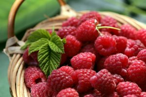 Raspberry Fragrance Oils