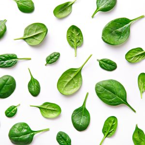 What is Spinach Powder Used for?: Other Uses