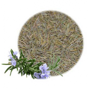 Herbs for Luck and Success: Rosemary Herb