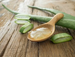 Aloe Body Cream Recipe: Aloe Vera Uses
