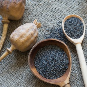 What Are Poppy Seeds Benefits?: Medicinal Uses