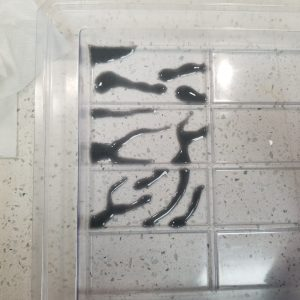 Zebra CP Soap Recipe: Adding the Zebra Stripes
