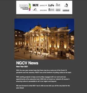 Screen shot of NGCV January Newsletter