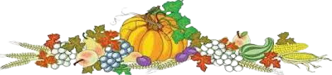 pumpkin patch with flowers