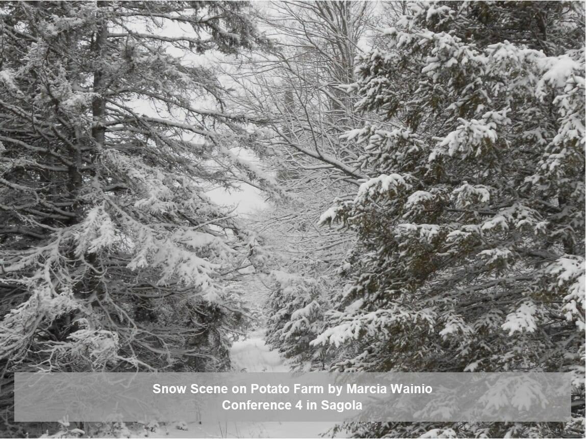 Snow Scene on Potato Farm by Marcia Wainio
