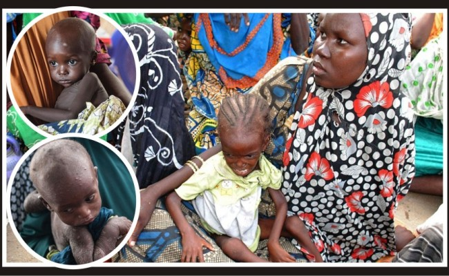 "Malnutrition rates in Nigeria ""horrifying"""