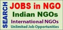 NGO Job