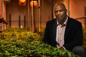 Kraft Offers Ricky Williams $29 Million to Supply Weed to Patriots Fans