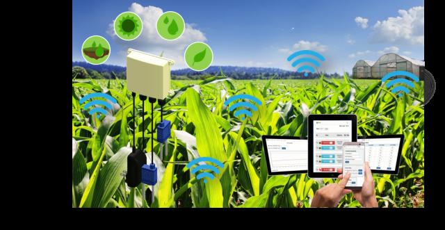 handysense, smart farm, ระบบสมาร์ตฟาร์ม, นวัตกรรมทางการเกษตร, เนคเทค, ผลงานวิจัย, ระบบช่วยรดน้ำในโรงเรียน, ระบบสมาร์ตฟาร์ม