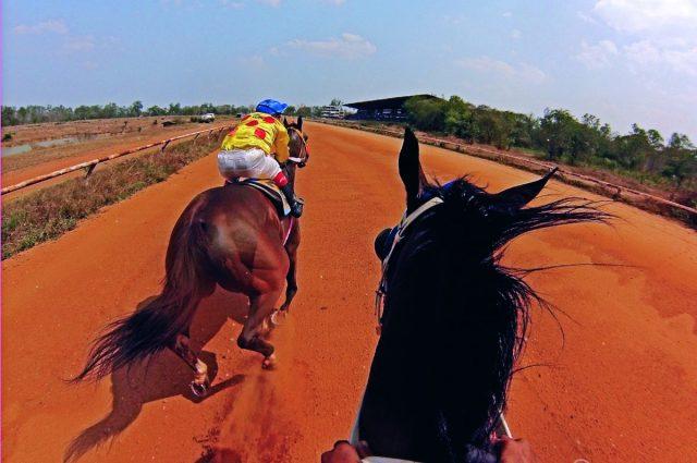จ๊อกกี้, ม้าแข่ง, แข่งม้า, อาชา