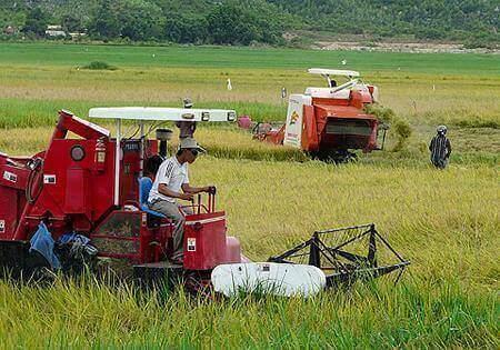Nền nông nghiệp theo hướng cơ giới hóa - hiện đại hóa