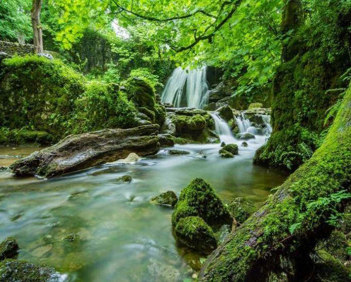 Hình phong cảnh tự nhiên