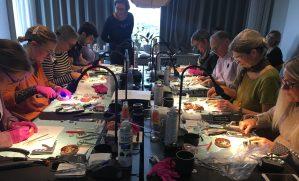 NHD Hands-on Plastkursus
