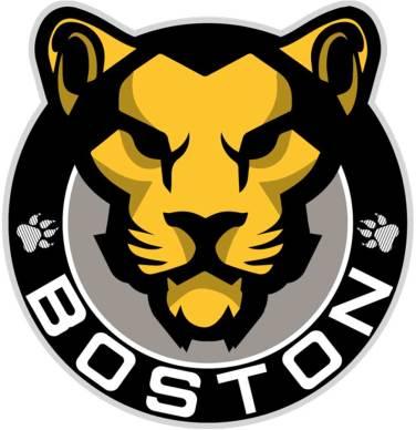 Logo do Boston Pride da NWHL