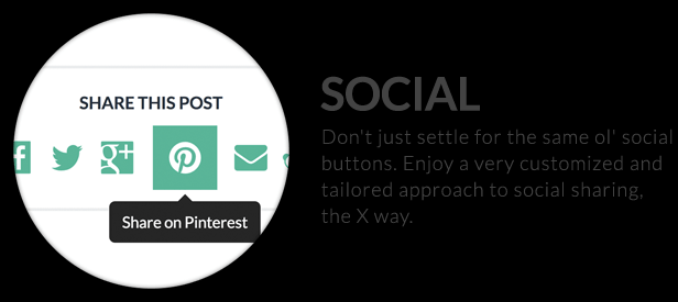 The X Theme for WordPress social