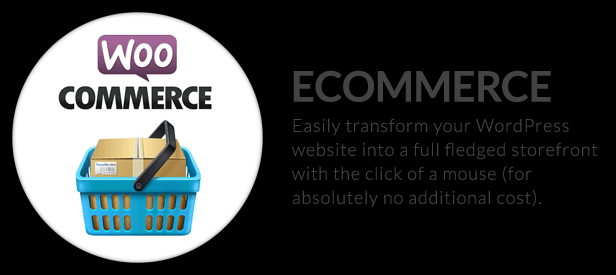 The X Theme for WordPress woocommerce