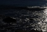 Biển Khuya
