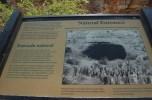 carlsbad caverns np (03)