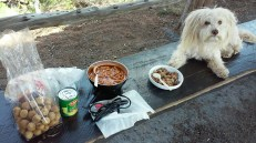 Lunch at Mesa Verde NP