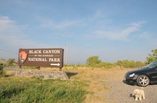 Black Danyon of the Gunnison National Park