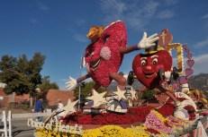 Rose Parade Floats 2016 (33)