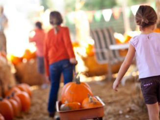 fall festivals in niagara