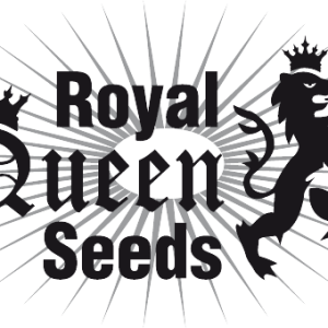 Royal Queen Seeds - Feminized