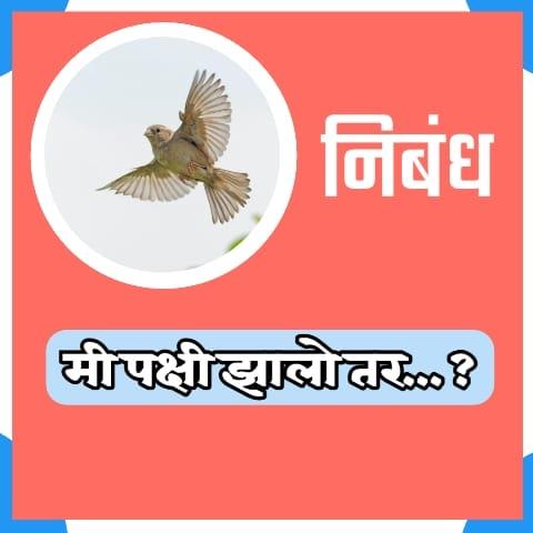 Mi Pakshi Zalo Tar Marathi Nibandh