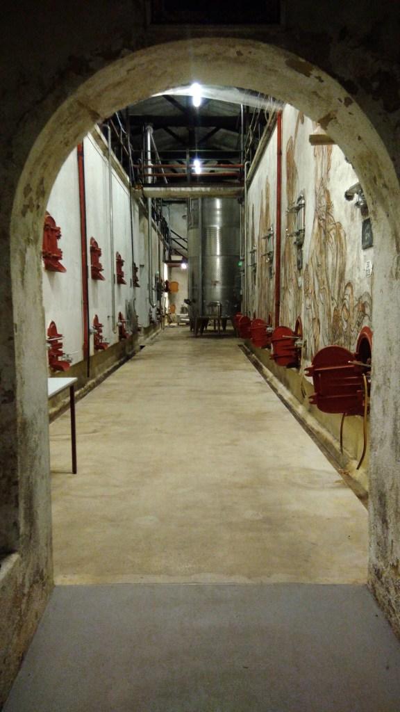 La cuverie du Chateau - Les cuves bétons qui attendent la vendange