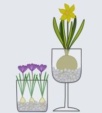 Bastelanleitung: Blumenzwiebeln im Glas