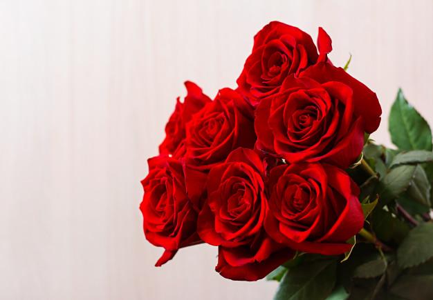 كلام جميل عن هدية الورد عبارات ورسائل وكلمات عن هدية الورد للفيس بوك