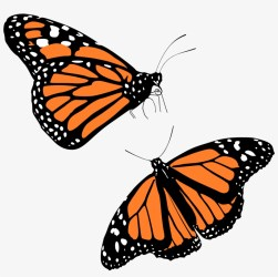 Monarch Butterflies Icons Png Transparent Background Monarch Butterfly Clipart Transparent PNG 2400x2400 Free Download on NicePNG