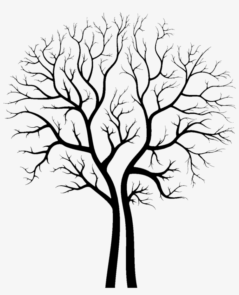 Aesthetic Tree Drawing : aesthetic, drawing, Transprent, Download, Drawing, Trace, Transparent, 881x1024, NicePNG