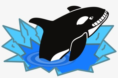 Orca Drawing Cute Killer Whale Clipart Transparent PNG 2400x1464 Free Download on NicePNG