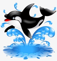 Killer Whale Png Jumping Whale Cartoon Transparent PNG 1266x1280 Free Download on NicePNG