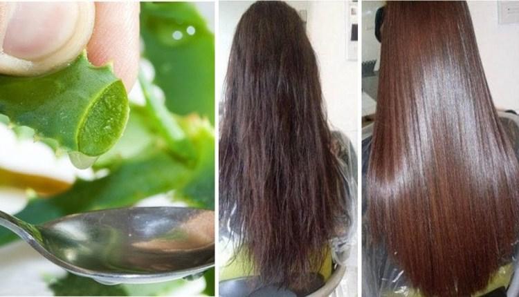 Aloe Vera for Hair Straightening