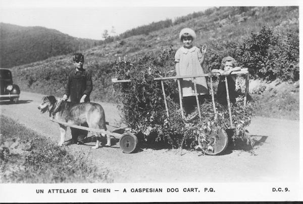 Les territoires du tourisme automobile au Québec et en Ontario: aménagement, promotion et représentation, 1920-1945