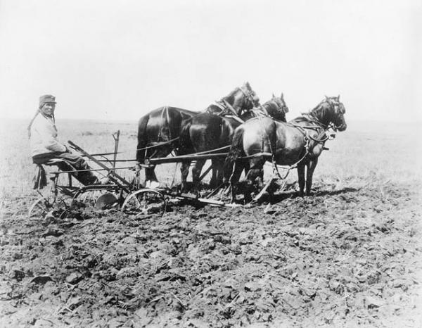 First Nations farmer ploughing field on Western Canadian Indian reserve, 1920. Source: Library and Archives Canada.