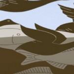 waterfishfowl