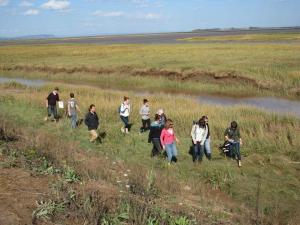 group-in-marsh