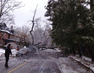 Destruction in the Annex, December 23rd, 2013. Photo: D Degroot.