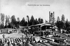 """Exploitation par les Canadiens."" Canadian Forestry Corps Mill. Source: Canada. Dept. of National Defence / Library and Archives Canada / PA-022980"