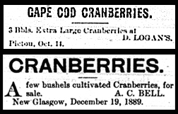 Advertisements for cranberries from the New Glasgow Eastern Chronicle, October 14, 1880; December 19, 1889.