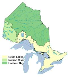 Ontario Watersheds