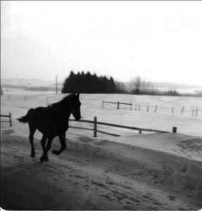 Farm in winter, ca. 1975. Source: Alan MacEachern