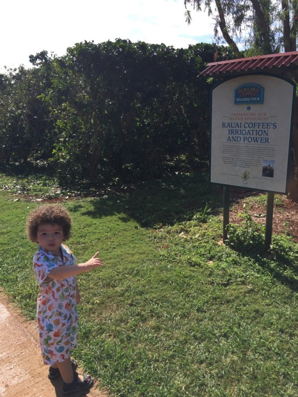 Kauai Coffee Plantation. My son already knows what's important in life.