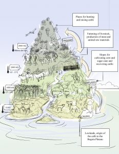 Figure 2. Management of altitudes and microclimates by the people of Bogota Plateau, 18th and 19th centuries. Source: the author and designer Andrés Segura (sketch).