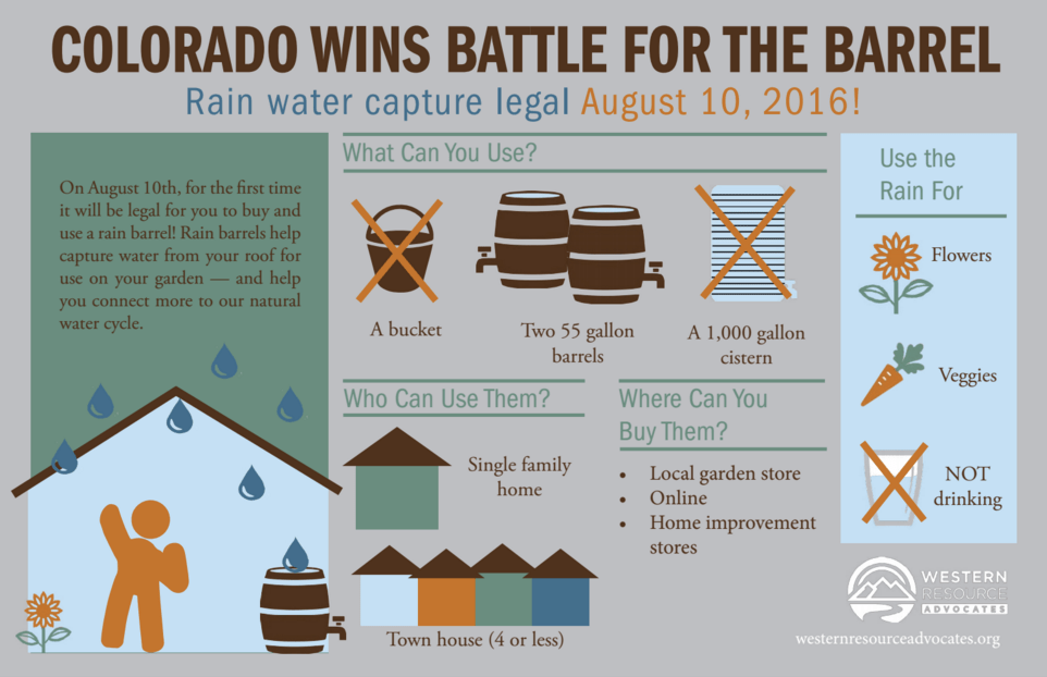 rainbarrel-infographic