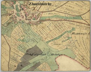 "Figure 3: Historical map of the centre of Holubí Zhoř (Zhorz Holuby in German) as created during the Franciscan cadastre mapping around 1824. : Zhorz Holuby. Catastral Schätzungs Operat, signature 715, filing (""Karton"") 280, file (""značka"") D8, fund ""Stable cadastre – Schätzungoperaten"". [Archive material] Moravian Provincial Archives in Brno, Czech Republic."