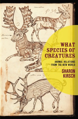 Image of book cover Kirsch, Sharon. What Species of Creatures: Animal Relations from the New World. Vancouver: New Star Books, 2008